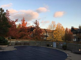 """Photo 37: 61 6747 203 Street in Langley: Willoughby Heights Townhouse for sale in """"SAGEBROOK"""" : MLS®# R2454928"""