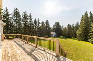 Photo 37: 121 62036 Twp 462: Rural Wetaskiwin County House for sale : MLS®# E4254421