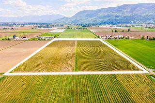 Photo 7: 4081 DIXON Road: Agri-Business for sale in Abbotsford: MLS®# C8038207