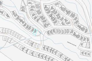 "Photo 6: 20716 SAKWI CREEK Road in Mission: Hemlock Land for sale in ""Hemlock Valley Ski Resort"" : MLS®# R2176457"