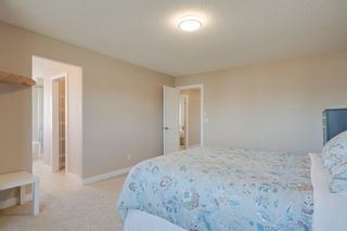 Photo 28: 160 Brightonstone Gardens SE in Calgary: New Brighton Detached for sale : MLS®# A1009065