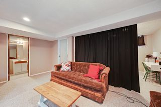 Photo 29: 129 Marquis Place SE: Airdrie Detached for sale : MLS®# A1086920