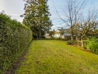 Photo 17: 925 HANDSWORTH Road in North Vancouver: Forest Hills NV House for sale : MLS®# V1110371