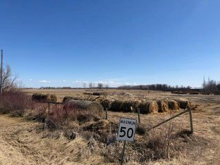 Photo 4: 0 20 Highway in Dauphin: R10 Farm for sale (R30 - Dauphin and Area)  : MLS®# 202008642