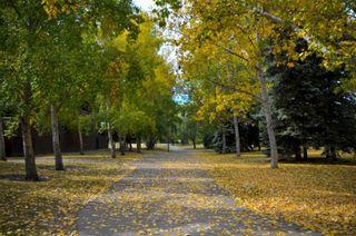 Photo 46: 1302A 500 Eau Claire Avenue SW in Calgary: Eau Claire Apartment for sale : MLS®# A1041808