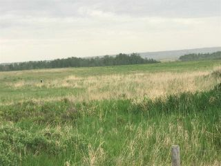 Photo 11: TWP 580 Rg Rd 240 Sturgeon County: Rural Sturgeon County Rural Land/Vacant Lot for sale : MLS®# E4248027