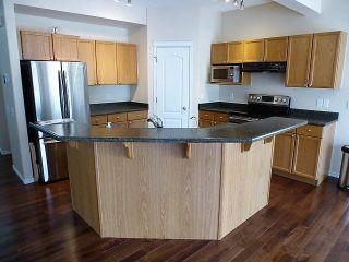 Photo 8: 5631 201 Street in Edmonton: Zone 58 House for sale : MLS®# E4248515