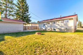 Photo 27:  in Edmonton: Zone 22 House for sale : MLS®# E4260068