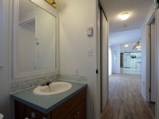 Photo 14: 26 Mount Stephen Avenue in Austin: House for sale : MLS®# 202102534