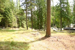 Photo 26: 11 6432 Sunnybrae Road in Tappen: Steamboat Shores Vacant Land for sale (Shuswap Lake)  : MLS®# 10155187