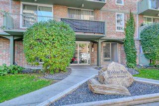 Photo 3: 201 1015 14 Avenue SW in Calgary: Beltline Apartment for sale : MLS®# A1074004