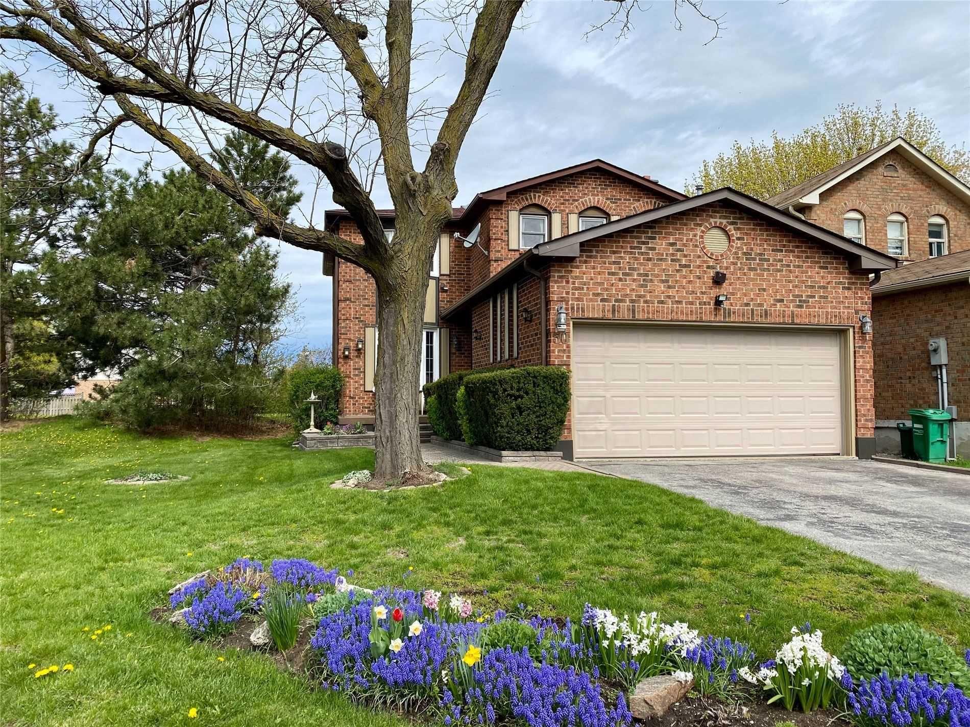 Main Photo: 50 Oleander Crescent in Brampton: Heart Lake East House (2-Storey) for sale : MLS®# W5217331