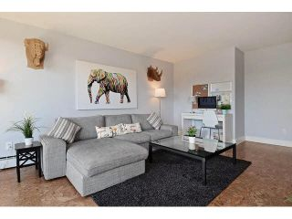 """Photo 4: 1004 320 ROYAL Avenue in New Westminster: Downtown NW Condo for sale in """"THE PEPPERTREE"""" : MLS®# V1142819"""