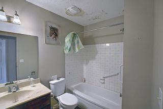 Photo 19: 217 Templemont Drive NE in Calgary: Temple Semi Detached for sale : MLS®# A1120693