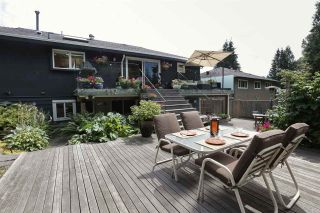 Photo 19: 923 PLYMOUTH Drive in North Vancouver: Windsor Park NV House for sale : MLS®# R2252737