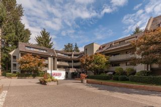 Photo 23: 317 1210 PACIFIC Street in Coquitlam: North Coquitlam Condo for sale : MLS®# R2618063