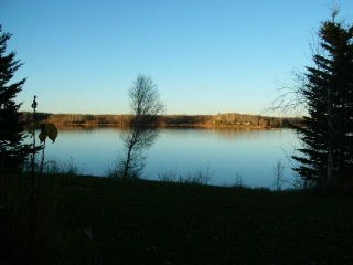 Photo 6: TWP RD 633 A Rge Rd 261A: Rural Westlock County Rural Land/Vacant Lot for sale : MLS®# E3283338