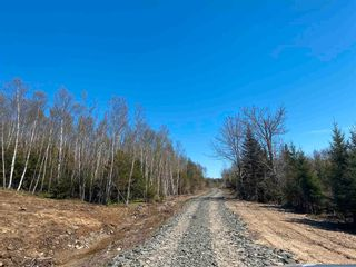 Photo 13: Lot NO 101 Highway in Brighton: 401-Digby County Vacant Land for sale (Annapolis Valley)  : MLS®# 202111786