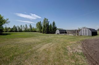Photo 34: 111 Butte Hills Place in Rural Rocky View County: Rural Rocky View MD Detached for sale : MLS®# A1116161