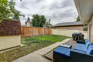 Photo 30: 184 Mountain Circle SE: Airdrie Detached for sale : MLS®# A1137347