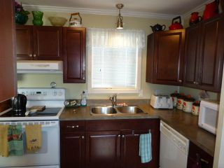 """Photo 11: 187 3665 244 Street in Langley: Otter District Manufactured Home for sale in """"LANGLEY GROVE ESTATES"""" : MLS®# R2197599"""