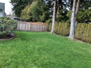 Photo 21: 669 CYPRESS Street in Coquitlam: Central Coquitlam House for sale : MLS®# R2549740