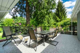 Photo 21: 2101 COMO LAKE Avenue in Coquitlam: Chineside House for sale : MLS®# R2546783