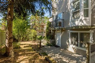 Photo 19: 23 9559 130A Street in Surrey: Queen Mary Park Surrey Townhouse for sale : MLS®# R2198103
