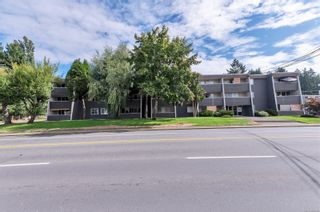 Photo 25: 210 377 Dogwood St in : CR Campbell River Central Condo for sale (Campbell River)  : MLS®# 886108