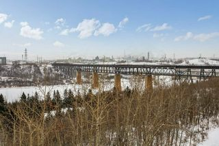 Photo 22: 403 1188 HYNDMAN Road in Edmonton: Zone 35 Condo for sale : MLS®# E4228866