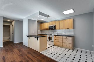 Photo 8: 307 903 19 Avenue SW in Calgary: Lower Mount Royal Apartment for sale : MLS®# A1152500