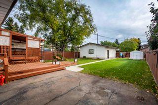 Photo 6: 9231 155 Street in Edmonton: Zone 22 House for sale : MLS®# E4263117