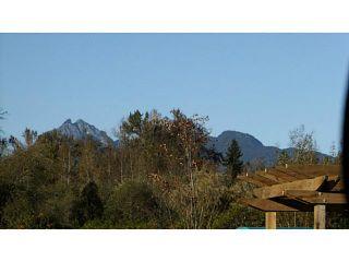 Photo 14: 24533 DEWDNEY TRUNK Road in Maple Ridge: Websters Corners House for sale : MLS®# V1033097