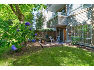 """Photo 28: 104 5565 INMAN Avenue in Burnaby: Central Park BS Condo for sale in """"AMBLE GREEN"""" (Burnaby South)  : MLS®# R2602480"""