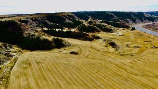 Photo 20:  in Rural Stettler No. 6, County of: Rural Stettler County Agriculture for sale : MLS®# C4295199
