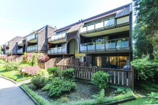 """Photo 20: 9899 MILLBROOK Lane in Burnaby: Cariboo Townhouse for sale in """"VILLAGE DEL PONTE"""" (Burnaby North)  : MLS®# R2372702"""