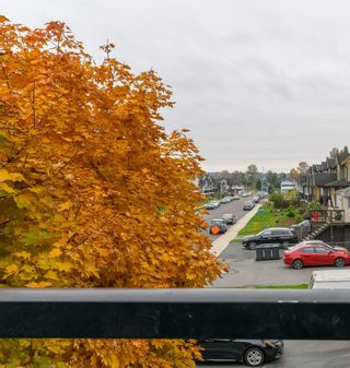 Photo 25: 211 288 HAMPTON Street in New Westminster: Queensborough Condo for sale : MLS®# R2511157