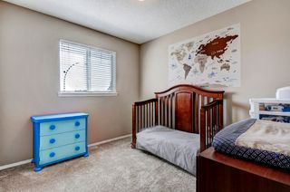 Photo 20: 101 Copperfield Gardens SE in Calgary: House for sale : MLS®# C4019487