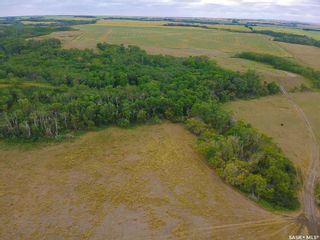 Photo 4: Rm Indian Head 160.39 acres in Indian Head: Farm for sale (Indian Head Rm No. 156)  : MLS®# SK867616