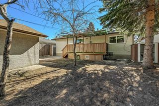 Photo 25: 4931 MARIAN Road NE in Calgary: Marlborough Detached for sale : MLS®# C4304951