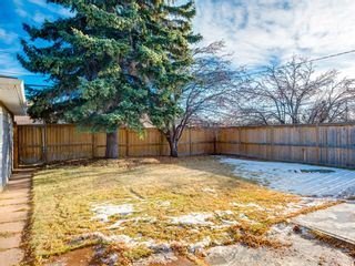 Photo 43: 68 Cawder Drive NW in Calgary: Collingwood Detached for sale : MLS®# A1053492