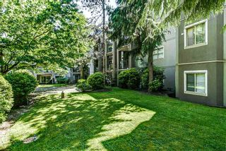 """Photo 14: 314 2615 JANE Street in Port Coquitlam: Central Pt Coquitlam Condo for sale in """"BURLEIGH GREEN"""" : MLS®# R2174335"""