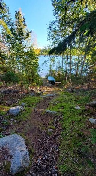 Photo 22: 252, 57201 Range Road 102: Rural St. Paul County Rural Land/Vacant Lot for sale : MLS®# E4264298