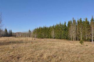 Photo 4: 10 57126 Range Road 12: Rural Barrhead County Rural Land/Vacant Lot for sale : MLS®# E4241768