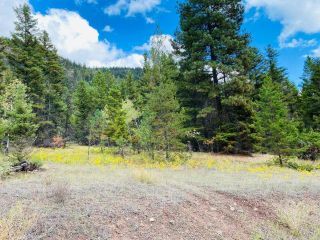 Photo 3: 9621 TRANQUILLE CRISS CRK ROAD in Kamloops: Red Lake Lots/Acreage for sale : MLS®# 164124