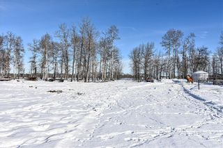 Photo 11: 53070 HIGHWAY 587: Rural Clearwater County Detached for sale : MLS®# C4285726