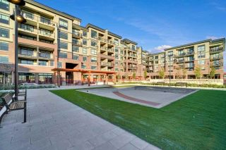 Photo 15: 201 22638 119 AVENUE in Maple Ridge: East Central Condo for sale : MLS®# R2521537