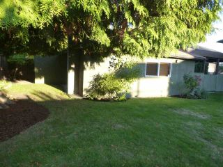 Photo 19: 1415 REGAN Avenue in Coquitlam: Central Coquitlam House for sale : MLS®# R2019990