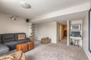 Photo 33: 121 WINDFORD Park SW: Airdrie Detached for sale : MLS®# C4288703