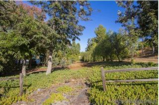 Photo 4: SANTEE House for sale : 5 bedrooms : 8540 S Slope Dr.
